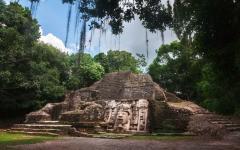 Visit Mayan ruins hidden in the jungle.