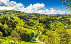 Scenic countryside landscape of Germany's Black Forest.