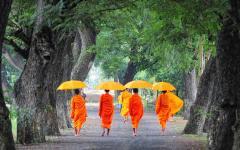 Cambodian monks walking along path.