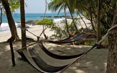 Relax under the palms in these hammocks at Ylang Ylang Beach Resort. Photo: Courtesy of Ylang Ylang Beach Resort