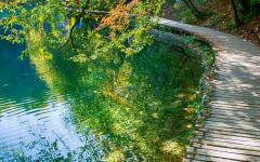 A wooden walkway in Plitvice National Park, Croatia.
