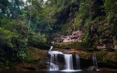 A beautiful waterfall hidden in the Colombian jungle.