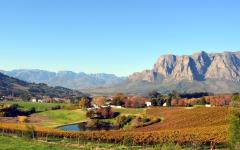 Beautiful view of the Franschhoek landscape with a vineyard in the foreground | South Africa
