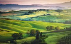 Lush green fields of the Tuscan landscape.