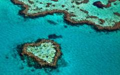australia great barrier reef heart reef aerial view