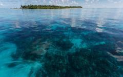 Hol Chan Marine Reserve Belize.