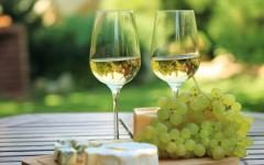 australia two glasses of white wine cheese and grapes