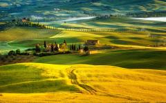 A landscape in Tuscany.