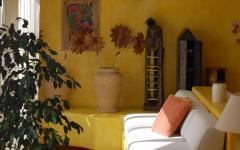 Suit at El Mosaico del Sol. Photo Credit: El Mosaico del Sol