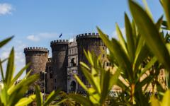 a low angle close up of plants in the foreground and the naples medieval castle in the background