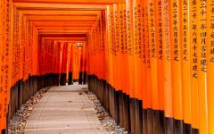 Fushimi Inari Taisha Shrine gates in Kyoto.
