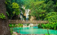 a waterfall surround by lush green trees with a bridge across the water