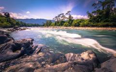 River through Manu National Park.