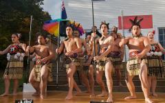 Maori cultural performance, Rotorua.