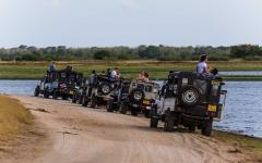 Line of safari jeeps filled with tourists in Minneriya National Park, Sri Lanka
