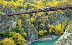 Bungy jumping - Queenstown!