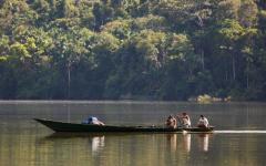 Boat ride through the Amazon Basin.