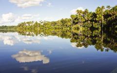 Beautiful lake in the Tambopata National Reserve.