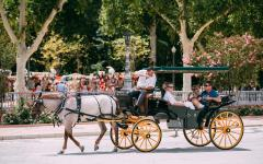 spain seville horse drawn carriage carrying tourists