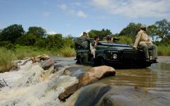 Safari game drive in Kruger National Park.