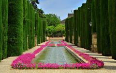 spain cordoba alcazar de los reyes cristianos gardens