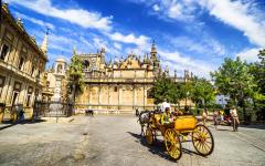 spain seville horse drawn carriage for tourist trips