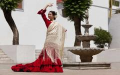 spain traditional dress of a flamenco dancer