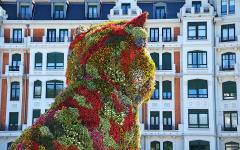 spain bilbao floral sculpture