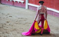 a bullfighter with a cape readys himself to face the bull