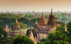 temples amongst lush green trees