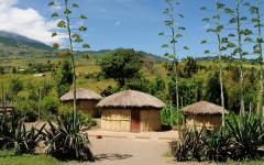 Traditional homes near the Arusha region in Tanzania.