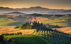 A view of Tuscany. Credit: Shutterstock