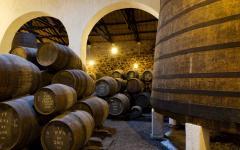 portugal barrels of wine in a wine cellar