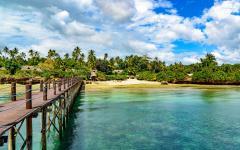 A view of the Zanzibar coast.
