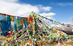 Up to 3 Top Bhutan Specialists;Compete to Customize Your Perfect Trip