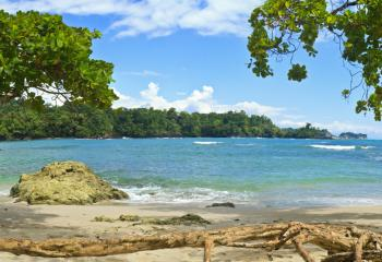 Manuel Antonio is known for beautiful beaches and its lush jungle.