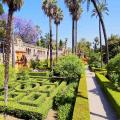 The gardens of the Real Alcazar Palace in Sevilla.