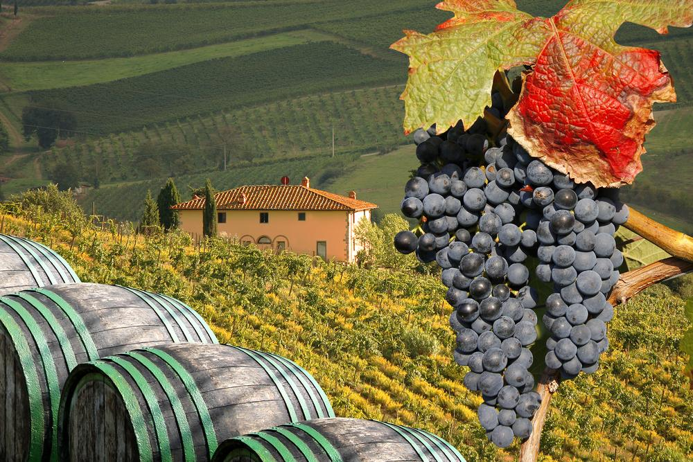Tuscan Food And Wine Tours