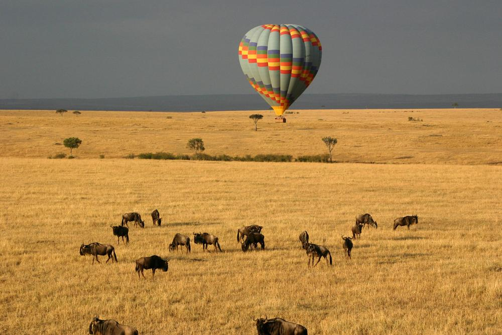 Great Migration African Safari Tanzania And Kenya