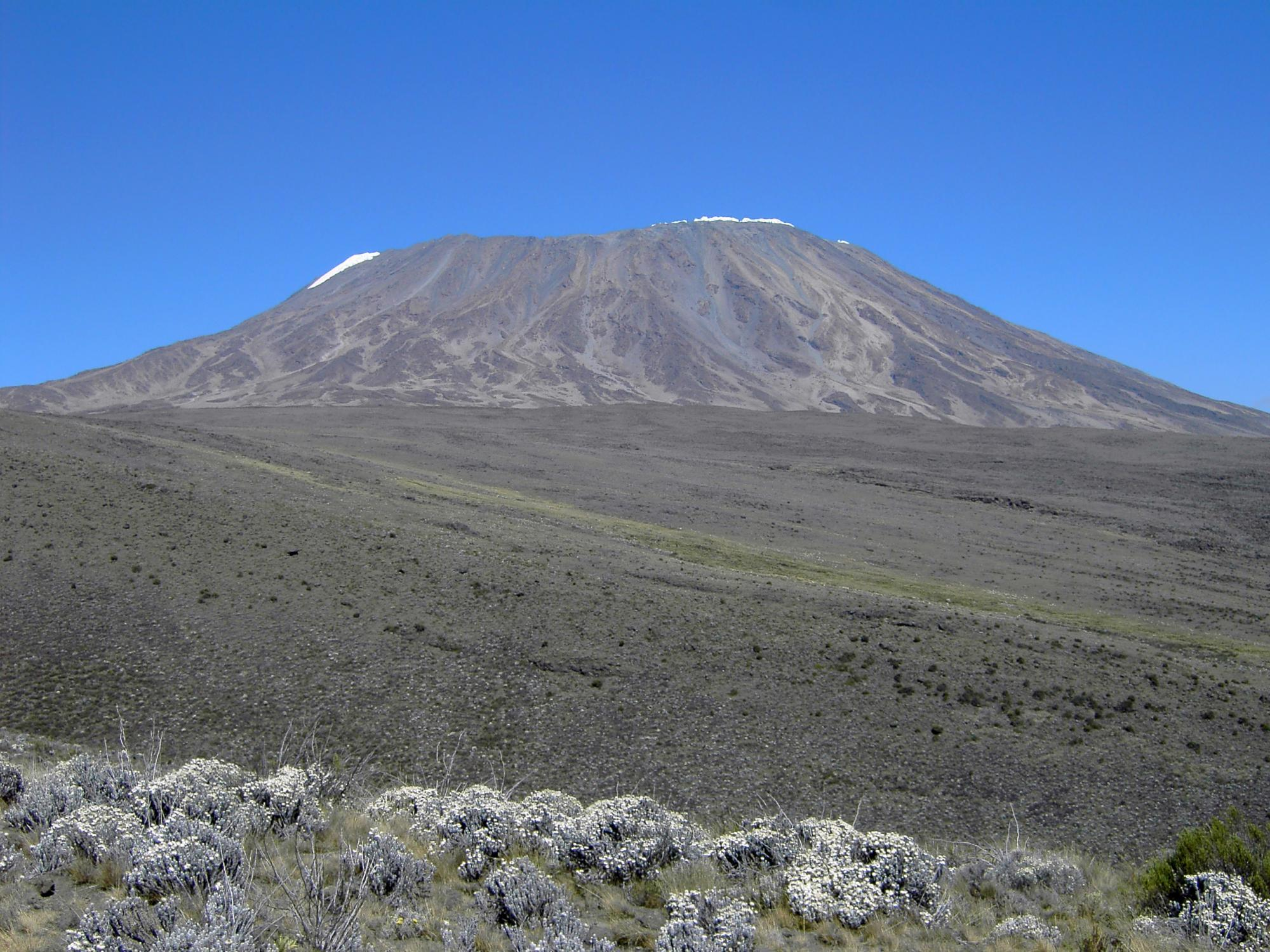 Kilimanjaro Climb Amp Wildlife Safari Tour Zicasso