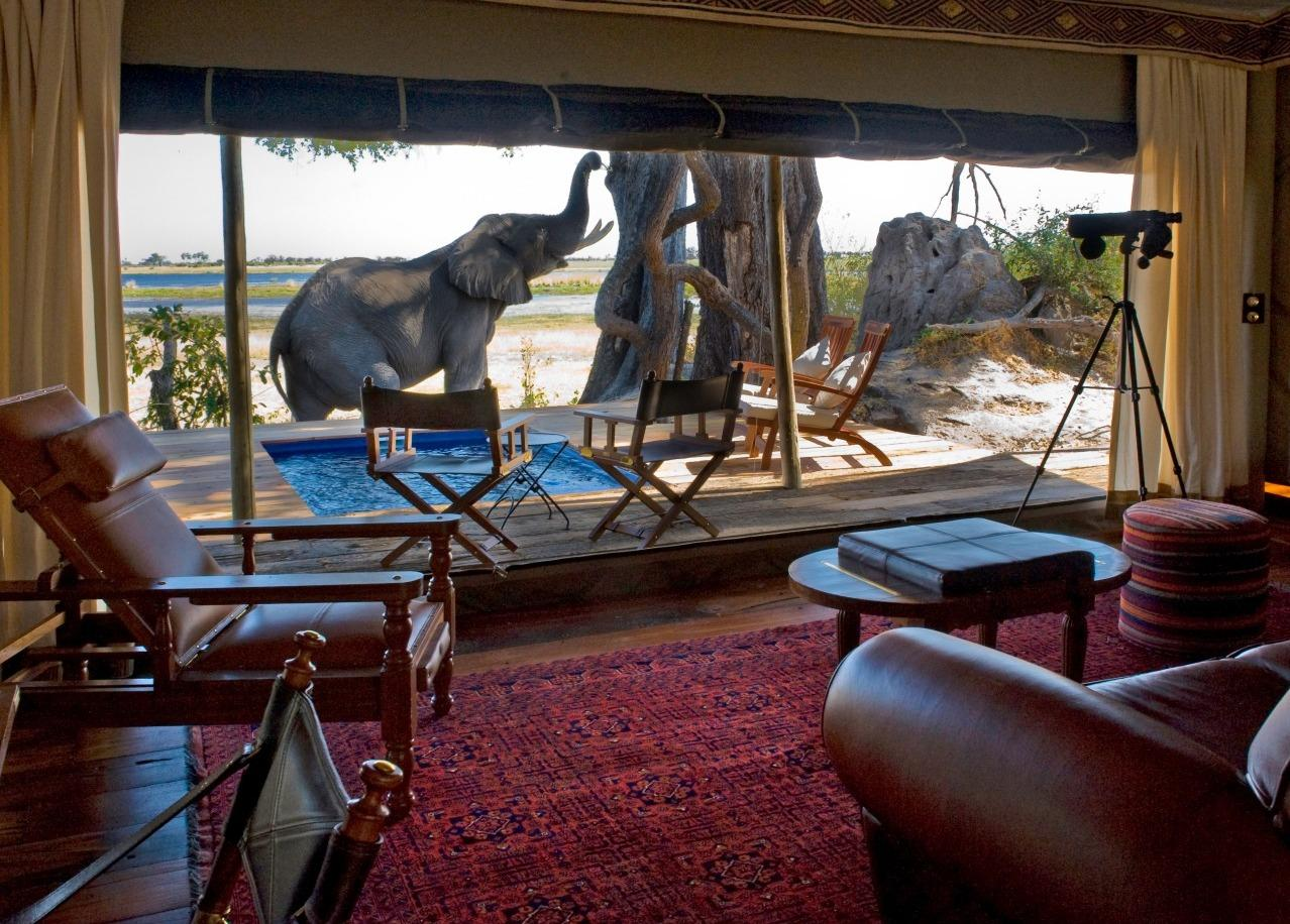 Best Of South Africa Amp Botswana Luxury African Safari