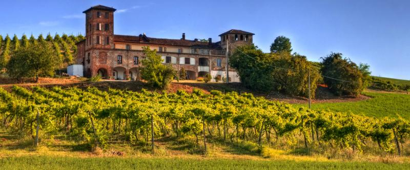 best wine tours in tuscany italy - photo#16