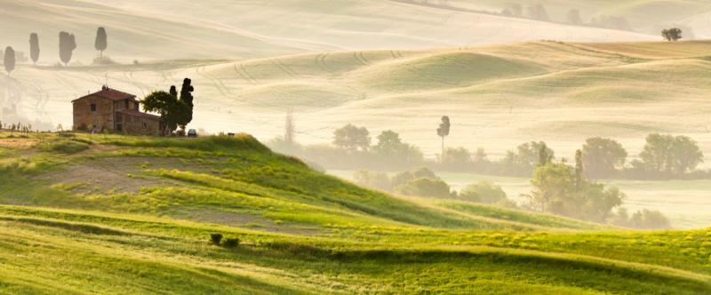 Early morning in Tuscany.