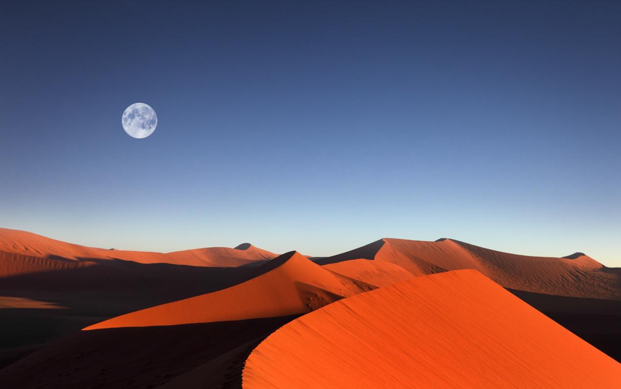 Displaying 19> Images For - Namib Desert Africa...