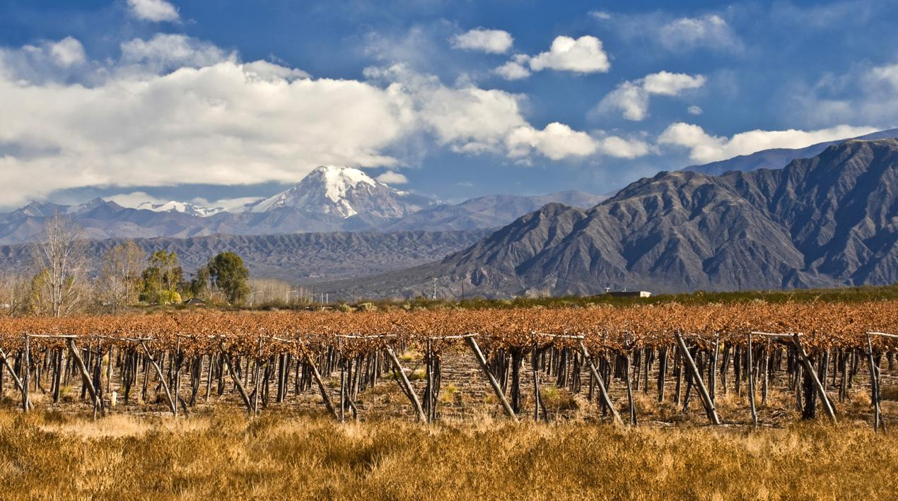 Review Copa Airlines Business Class Los Angeles To Panama City To Buenos Aires besides Showthread also Will Smith Flaunts Chiseled Body Buffed Arms additionally Guanaco moreover Buenos Aires Mendoza Santiago Wine Tour. on buenos aires reviews