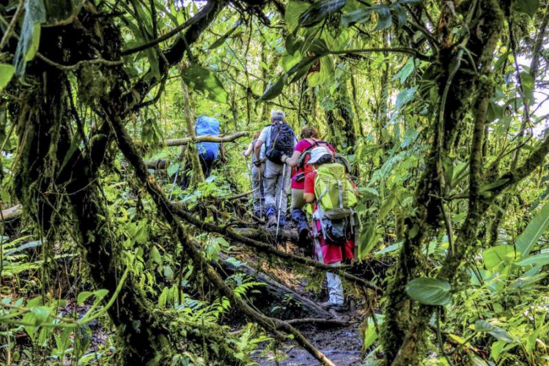 Guided wildlife tour of Chato Volcano Costa Rica.