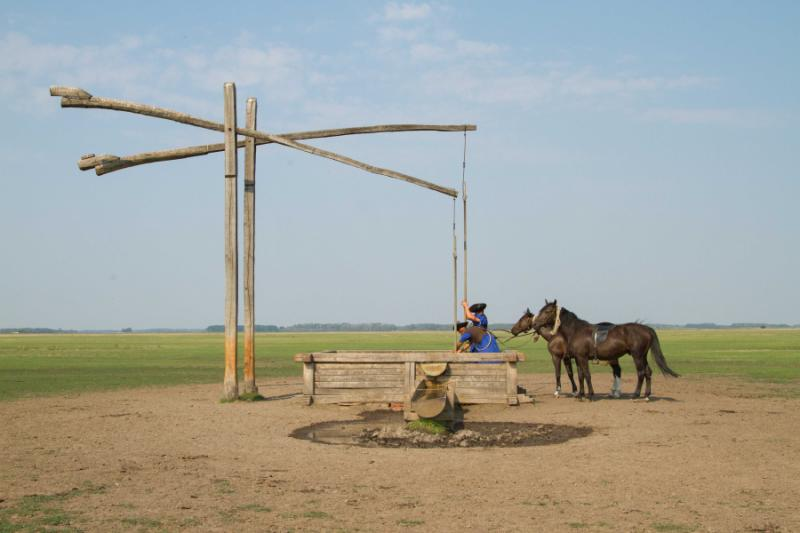 Traditional horsemenorss in the Great Hungarian Plain.