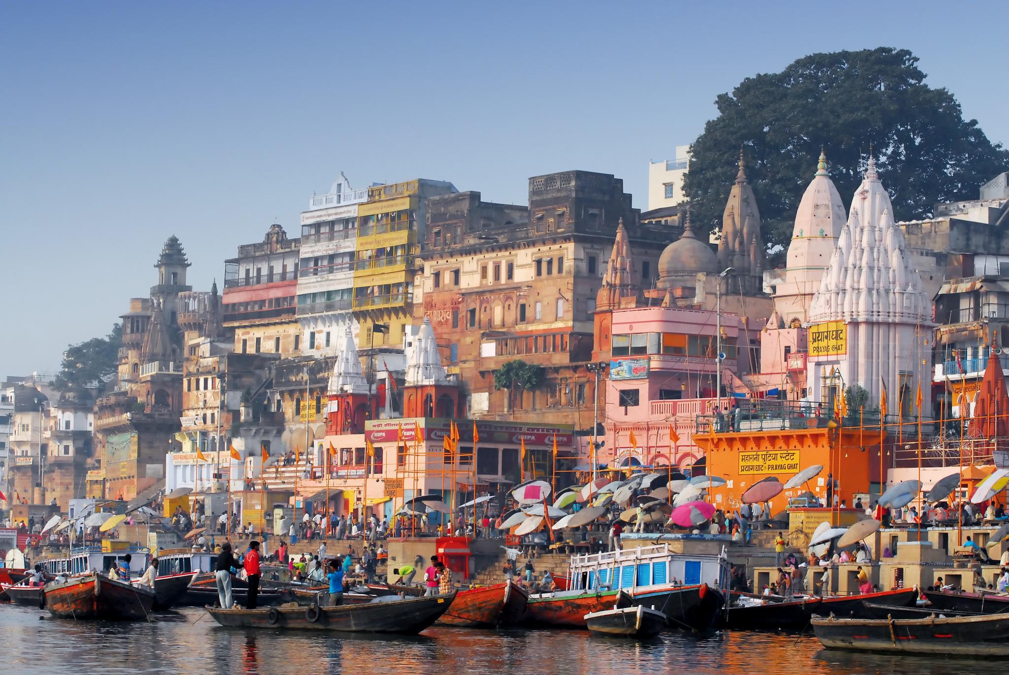 Go India Travel Agency