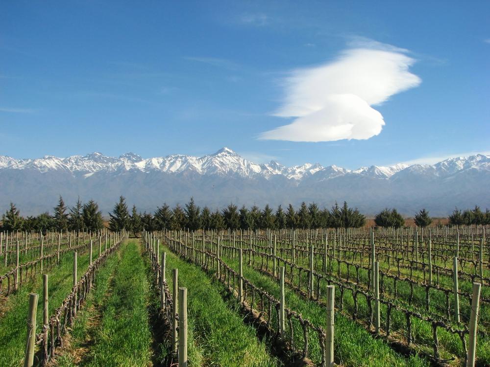 Buenos Aires Mendoza Amp Santiago Wine Tour Zicasso