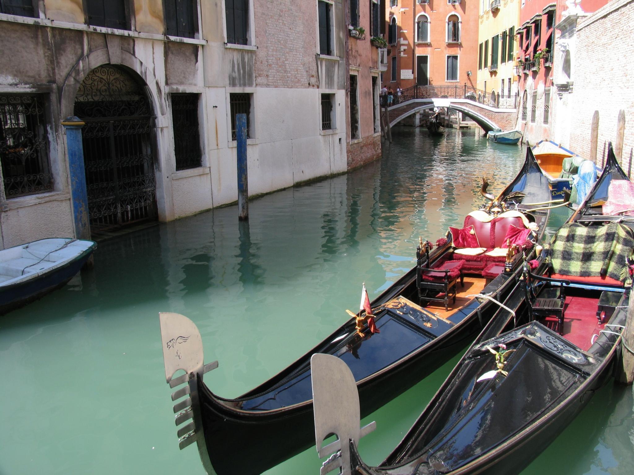 Venecia, Italia Tours - Traslados, traslados en barco y Venecia City Tours